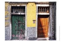 Weathered Doorway VII Fine Art Print