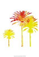 Sunny Palm I Framed Print