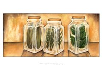 Spice Jars II Framed Print