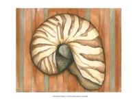Shell on Stripes IV - light Fine Art Print