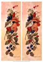 Berry Vine I Fine Art Print