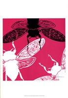 Pop Fly II Framed Print