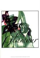 Fashion Glamour Framed Print