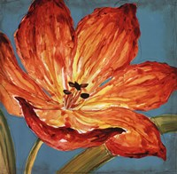 Flame Tulip I Fine Art Print