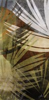 Palm Frond II Fine Art Print