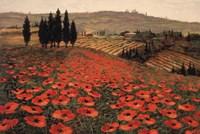 Hills Of Tuscany I Fine Art Print