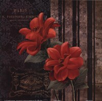 Paris Fleurs II Framed Print