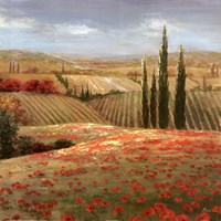 Tuscan Cypress II Framed Print