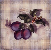 Tartan Fruit-Plum Fine Art Print