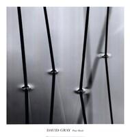 Four Reeds Fine Art Print