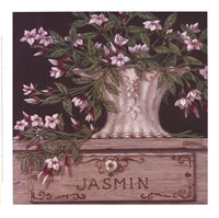 Jasmin Fine Art Print