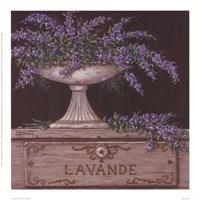 Lavande Fine Art Print