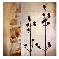 Sombras de Oro I Framed Print