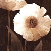 Paisley Poppy II Framed Print