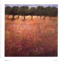 Orchard Fine Art Print