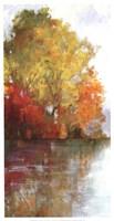 Forest Reflection II Fine Art Print