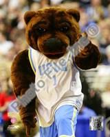 UCLA Bruins Mascot 2009 Fine Art Print