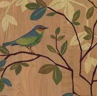 Songbird III Framed Print
