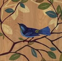 Songbird IV Fine Art Print