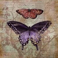 Vintage Butterflies IV Fine Art Print