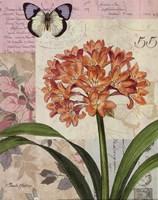 Cilvia Floral Collage Framed Print