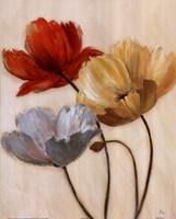 Poppy Palette II Fine Art Print