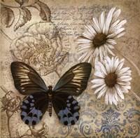 Butterfly Garden I Framed Print