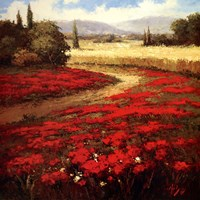 Red Poppy Trail Fine Art Print