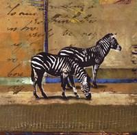 Serengeti Zebra Framed Print