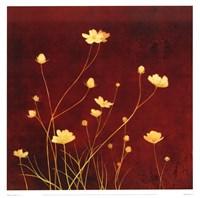 Flores en el Campo I Fine Art Print