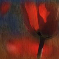 Elegant Blaze II Fine Art Print