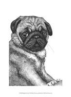 Ralph the Pug Fine Art Print