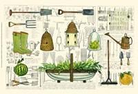 Garden Collection I Fine Art Print