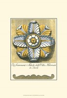 Blue & Yellow Rosette II Fine Art Print