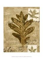 Mini Leaf Collage I (ST) Fine Art Print