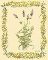 Small Lavender Framed Print