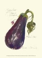 Eggplant Solanum Melongena Fine Art Print