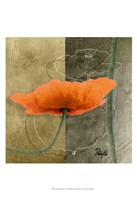 Orange Poppies VI Fine Art Print