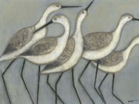 Shore Birds II Fine Art Print