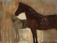 Weathered Equine II Fine Art Print