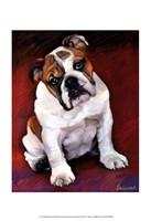 Bulldog Baby Fine Art Print