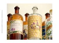 French Perfume Bottles II Fine Art Print