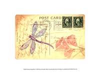 Postcard Dragonfly I Fine Art Print