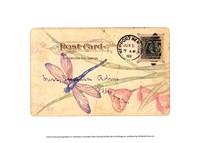 Postcard Dragonfly II Fine Art Print
