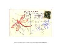 Postcard Dragonfly IV Fine Art Print