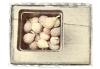 Basket of Figs Fine Art Print