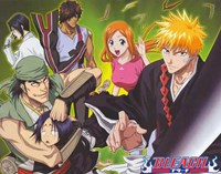 Bleach Wall Poster