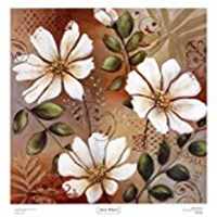 Sienna White I Fine Art Print