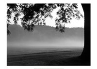 Fog in the Park I Fine Art Print