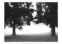 Fog in the Park II Fine Art Print